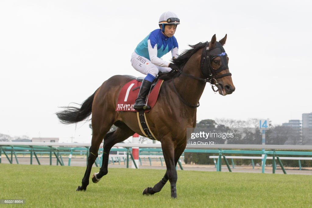 Jockey Yasunari Iwata riding Admire Eikan during the Race 11 Yayoi Sho - Japanese 2000 Guineas Trial (G2 2000m) at Nakayama Racecourse on March 6, 2016 in Funabashi, Chiba, Japan.