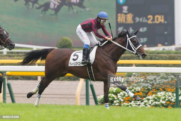 Jockey Yasunari Iwata riding Queen's Best wins the Race 5 at Tokyo Racecourse on October 11 2015 in Tokyo Japan