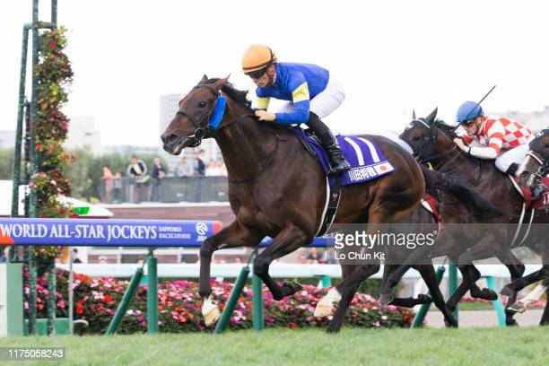 Jockey Yuga Kawada riding Precious Blue wins the Race 12 2019 World All-Star Jockeys 4th Leg at Sapporo Racecourse on August 25, 2019 in Sapporo,...