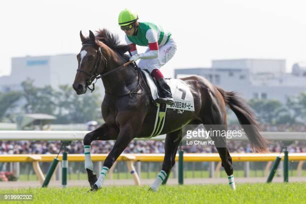 Jockey Yuichi Fukunaga riding Epiphaneia during the Tokyo Yushun at Tokyo Racecourse on May 26 2013 in Tokyo Japan Tokyo Yushun Japanese Derby is the...