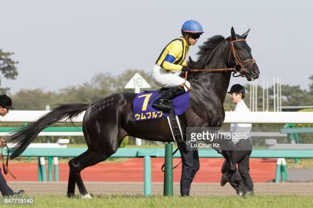 Jockey Yuichi Shibayama riding Umbruch during the Satsuki Sho Japanese 2000 Guineas at Nakayama Racecourse on April 17 2016 in Funabashi Japan