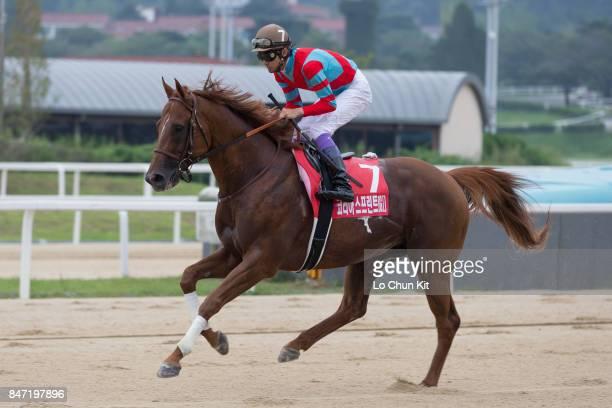 Jockey Yutaka Take riding Graceful Leap wins the Korea Sprint at Seoul Racecourse on September 10 2017 in Seoul South Korea