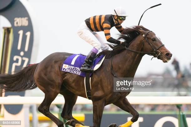 Jockey Yutaka Take riding Kitasan Black wins 36th Japan Cup at Tokyo Racecourse on November 27 2016 in Tokyo Japan