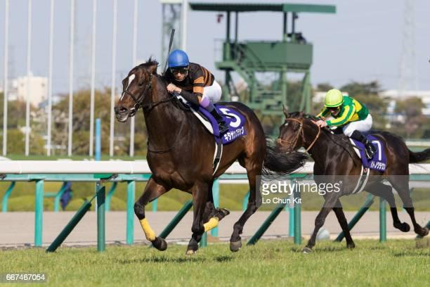 Jockey Yutaka Take riding Kitasan Black wins the 61st Osaka Hai at Hanshin Racecourse on April 2 2017 in Takarazuka Japan Osaka Hai upgraded to G1...