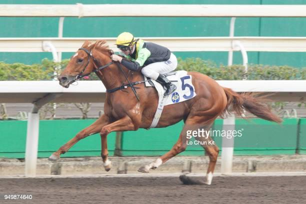 KONG APRIL Jockey Zac Purton riding Ugly Warrior wins Race 9 AgeFriendly City Handicap at Sha Tin racecourse on April 21 2018 in Hong Kong