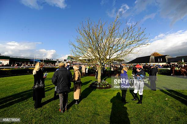 Jockeys and connections in the parade ring at Carlisle racecourse on November 02 2014 in Carlisle England