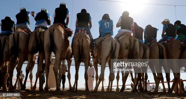 TOPSHOT Jockeys await the start of a race during the Sheikh Sultan Bin Zayed alNahyan camel festival at the Shweihan racecourse in alAin on the...