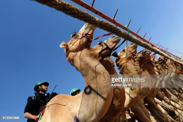 Jockeys await the start of a race during the Sheikh Sultan Bin Zayed alNahyan camel festival at the Shweihan racecourse in alAin on the outskirts of...