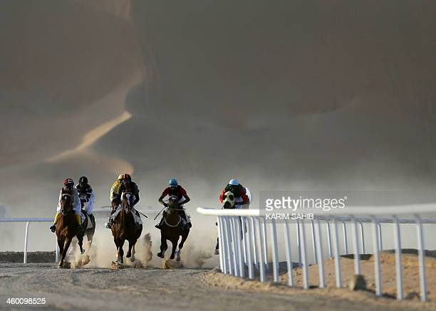 Jockeys compete in a race for purebred Arab horses during the Liwa 2014 Moreeb Dune Festival on January 2 in the Liwa desert 250 kilometres west of...