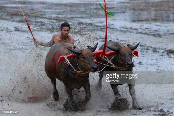 Jockeys compete in Chonburi's annual buffalo race festival in Chonburi province east of Bangkok on July 15 2018
