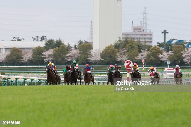 Jockeys compete the Race 10 Marguerite Stakes at Hanshin Racecourse on April 3 2016 in Takarazuka Japan