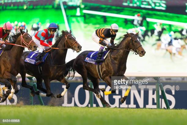 Jockeys compete the Race 11 Japan Cup at Tokyo Racecourse on November 27 2016 in Tokyo Japan