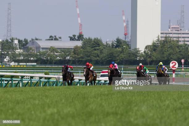 Jockeys compete the Race 8 at Hanshin Racecourse on June 24 2018 in Takarazuka Japan