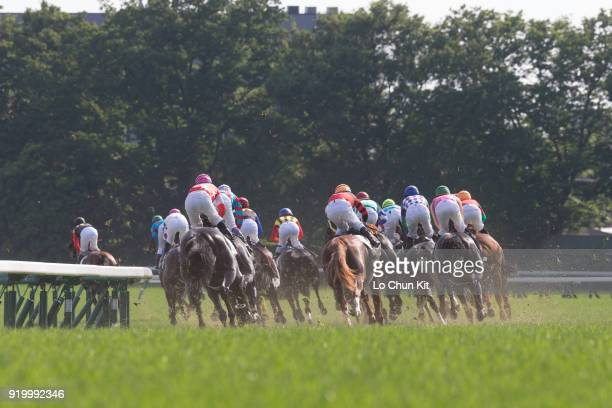 Jockeys compete the Tokyo Yushun at Tokyo Racecourse on May 26 2013 Tokyo Yushun Japanese Derby is the second leg of Japan's Triple Crown