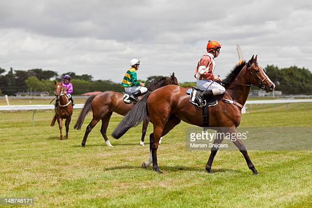 jockeys on race horses. - merten snijders stock pictures, royalty-free photos & images