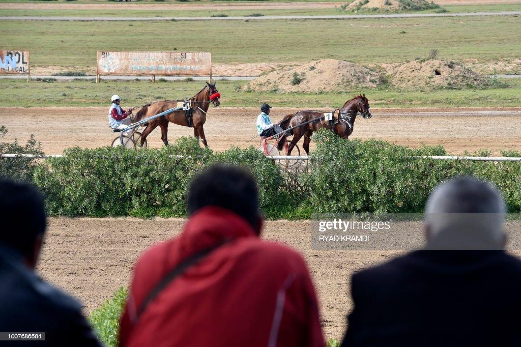 ALGERIA EQUESTRIAN SOCIETY TOURISM News Photo