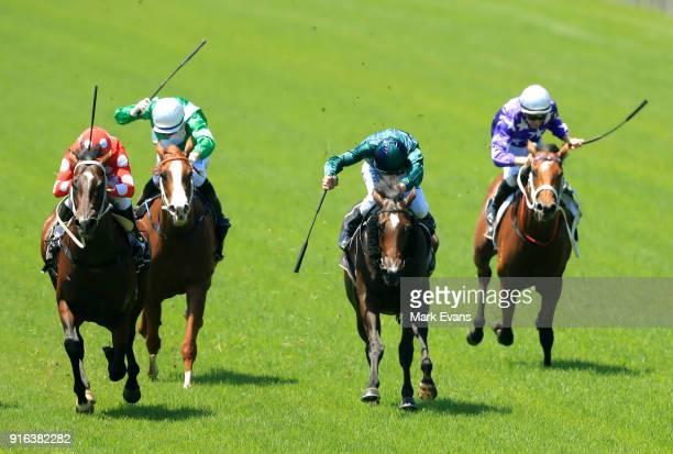 Jockeys whip their horses as Christian Reith on Sandbar wins race 1 during Sydney Racing at Warwick Farm on February 10, 2018 in Sydney, Australia.