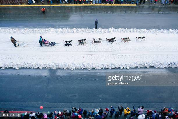 Jodi Bailey of Fairbanks mushes down Fourth Avenue in Anchorage Alaska at the Iditarod's Ceremonial Start on March 7 2015 Snow was brought in by...