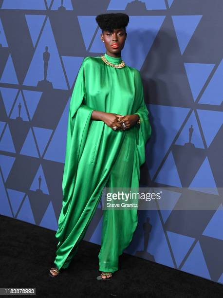 Jodie TurnerSmith arrives at the Academy Of Motion Picture Arts And Sciences' 11th Annual Governors Awards at The Ray Dolby Ballroom at Hollywood...