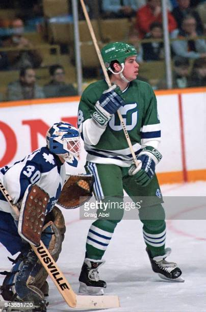 Jody Hull of the Hartford Whalers skates against Allan Bester of the Toronto Maple Leafs during NHL game action on February 15 1989 at Maple Leaf...