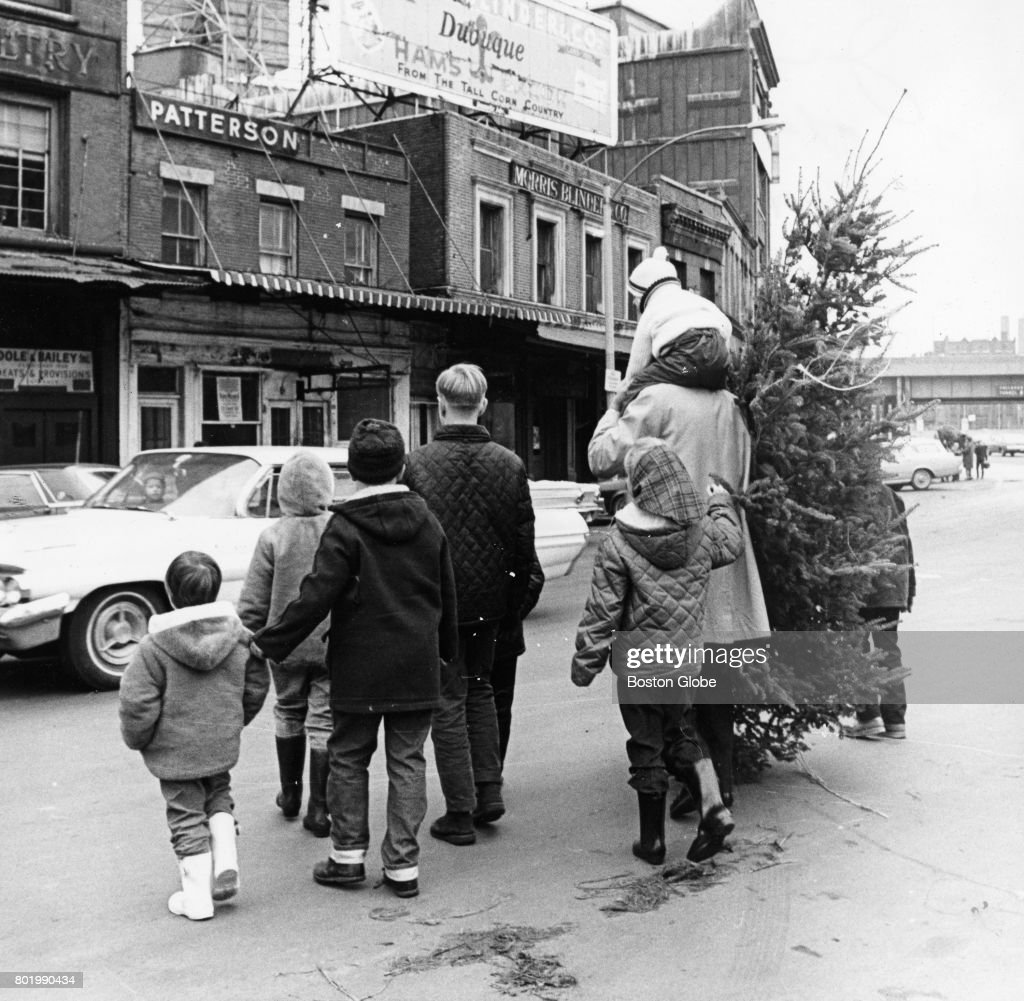 Christmas Trees Dorchester: Joe Adams, Of Dorchester, And His Family Purchase A