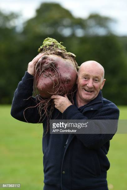 Joe Atherton poses for a photograph with his 168 kg beetroot which won its class in the giant vegetable competition on the first day of the Harrogate...