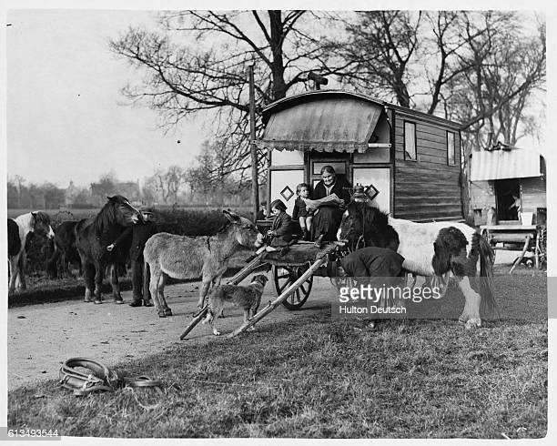 Joe Binkley brings his pony circus to a halt on a country road near Tewkesbury in Gloucestershire to enable him to shoe one of his ponies His elderly...