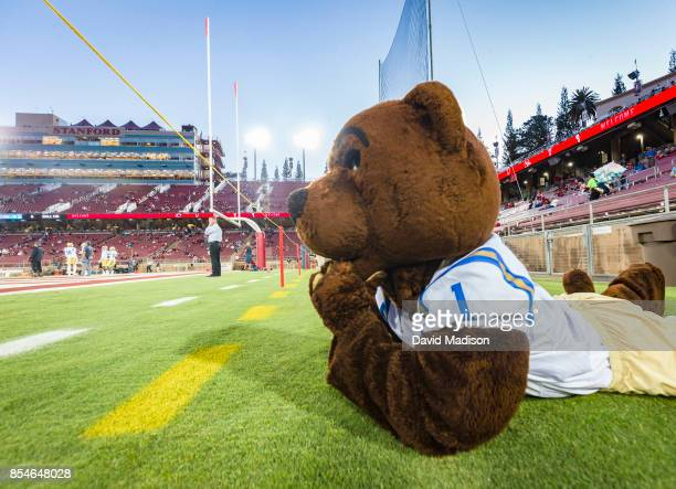 Joe Bruin official mascot of the UCLA Bruins watches pregame warmups before an NCAA Pac12 football game between the UCLA Bruins and the Stanford...