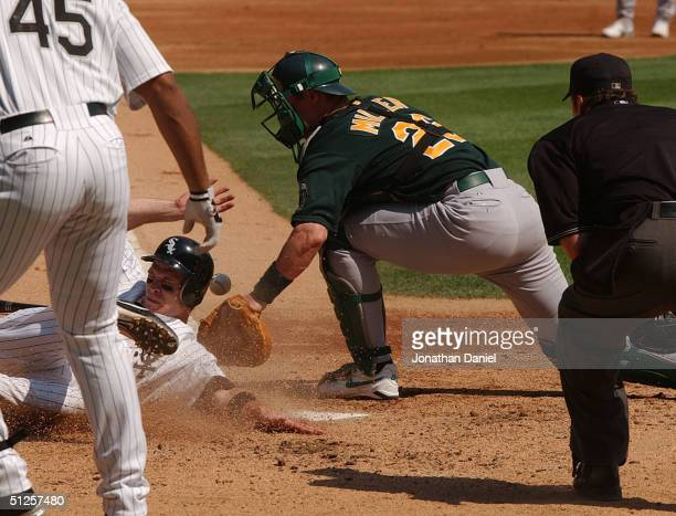 Joe Crede of the Chicago White Sox scores a run in the third inning as Damian Miller of the Oakland Athletics drops the ball at the plate on...
