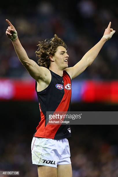 Joe Daniher of the Bombers celebrates a goal during the round 15 AFL match between the Geelong Cats and the Essendon Bombers at Etihad Stadium on...