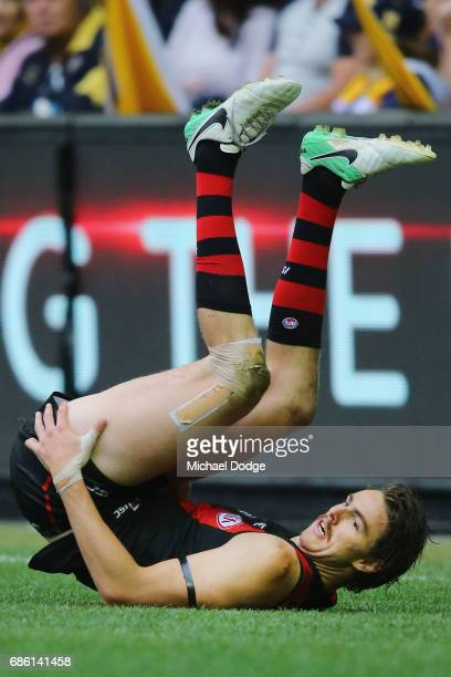 Joe Daniher of the Bombers celebrates a goal during the round nine AFL match between the Essendon Bombers and the West Coast Eagles at Etihad Stadium...