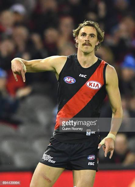 Joe Daniher of the Bombers celebrates kicking a goal during the round 12 AFL match between the Essendon Bombers and the Port Adelaide Power at Etihad...