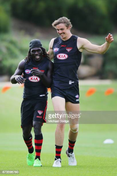 Joe Daniher of the Bombers dances wit Anthony McDonaldTipungwuti of the Bombers during an Essendon Bombers AFL training session at True Value Solar...