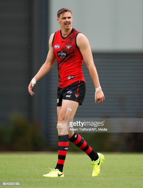 Joe Daniher of the Bombers looks on during the Essendon Bombers training session at The Hangar on January 12 2018 in Melbourne Australia