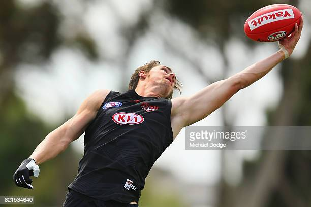 Joe Daniher of the Bombers marks the ball one handed during an Essendon Bomber AFL preseason training session at True Value Solar Centre on November...