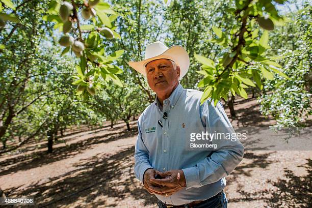 Joe Del Bosque president of Del Bosque Farms Inc stands for a photograph in an almond orchard at Del Bosque Farms Inc in Firebaugh California US on...