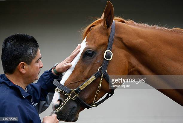 Joe Estrada tends to Kentucky Oaks hopeful Rags to Riches on the morning of the running of the Kentucky Oaks on May 4 2007 at Churchill Downs in...