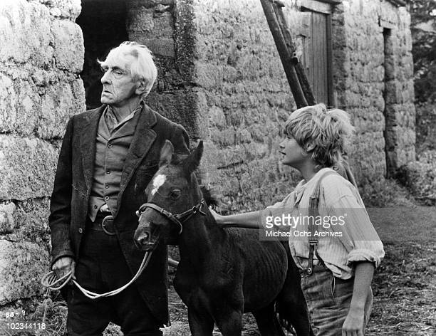 Joe Evans with his black stallion and a man in a scene from the movie Black Beauty which was released in 1971