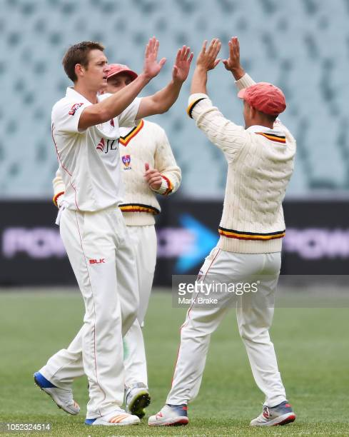 Joe Mennie of the Redbacks clean bowls Peter Nevill captain of the Bluesduring the Sheffield Shield match between South Australia and New South Wales...