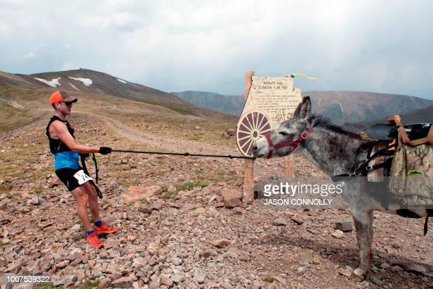 Joe Polonsky of Palmer Lake Colorado struggles to pull his burro Jake around the Mosquito Pass marker sign at an elevation of 13188 feet during the...