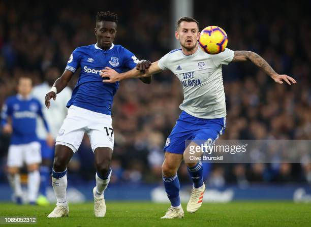 Joe Ralls of Cardiff City and Idrissa Gueye of Everton clash during the Premier League match between Everton FC and Cardiff City at Goodison Park on...