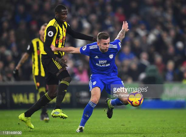 Joe Ralls of Cardiff City hold soff Abdoulaye Doucoure of Watford during the Premier League match between Cardiff City and Watford FC at Cardiff City...