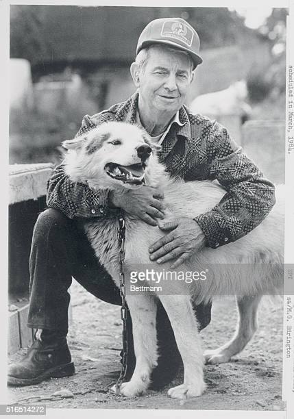 Joe Redington first man to drive a sled team to the top of Mount McKinley hugs one of his sled dogs Redington soon will leave his 250dog kennel with...