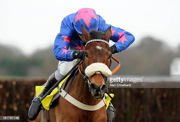 Joe Tizzard riding Cue Card clear the last to win The Betfair Ascot Steeple Chase at Ascot racecourse on February 16 2013 in Ascot England