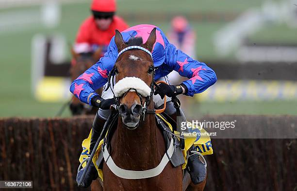 Joe Tizzard riding Cue Card clear the last to win The Ryanair Steeple Chase during St Patrick's Thursday at Cheltenham racecourse on March 14 2013 in...