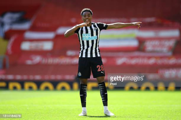 Joe Willock of Newcastle United celebrates after scoring their side's first goal during the Premier League match between Liverpool and Newcastle...