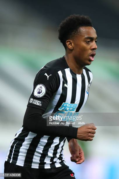 Joe Willock of Newcastle United during the Premier League match between Newcastle United and Wolverhampton Wanderers at St. James Park on February...