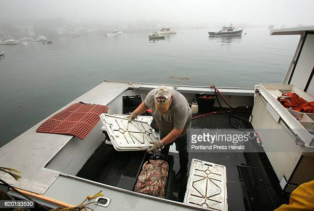 Joe Woods puts a cover on a crate of bait aboard the Schyler Annette at Greenhead Lobster in Stonington harbor on Lobstermen on Thursday September 8...