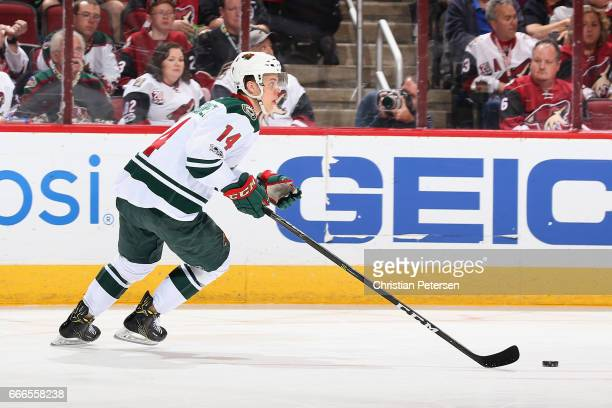 Joel Eriksson Ek of the Minnesota Wild in action during the NHL game against the Arizona Coyotes at Gila River Arena on April 8 2017 in Glendale...