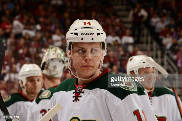 Joel Eriksson Ek of the Minnesota Wild looks up ice during a stop in play against the Arizona Coyotes at Gila River Arena on April 8 2017 in Glendale...